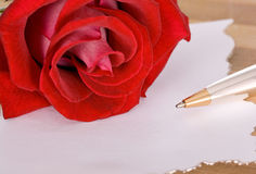 Rose and pen Stock Images