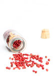 Rose pepper Royalty Free Stock Photos