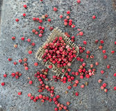 Rose pepper in abstract background. Rose pepper in grunge background Stock Images