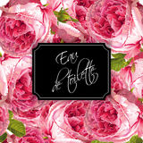 Rose perfume banner. Vector eau de toilette luxury banner with garden roses background. Can be used as floral design for natural cosmetics, perfume, health care Royalty Free Stock Photo