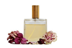 Rose Perfume Royalty Free Stock Photos