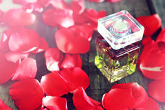 Rose perfume bottle and petal Royalty Free Stock Image