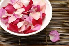 Rose petal. Preparing for rose petal spa on mat Stock Photography