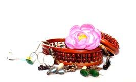 Rose petal. Royalty Free Stock Image
