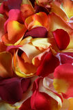 Rose petal background. Background image of rose petals for spa, aromatherapy, or pampering stock image
