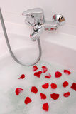Rose Petal Bath. End area of a white bathtub with faucet.  White tile surround.  Bubbles and red rose petals floating in the water Stock Image