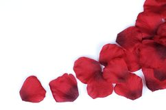 Rose petal border. On white background Stock Photos
