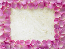 Rose Petal Border. Overhead Of Pink Rose Petal Border stock photo
