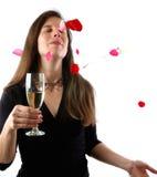 Rose petal dream Stock Image