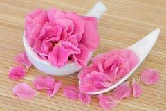 Rose Petal Flowers lizenzfreie stockbilder