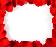 Rose petal frame Stock Photos