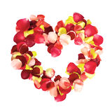 Rose Petal Heart. Multicolored Rose Petal Heart isolated on white background stock photo
