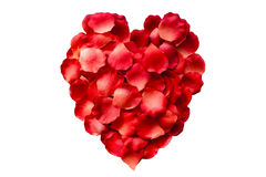 Rose Petal Heart. Heart of rose petals on an isolated background Stock Image