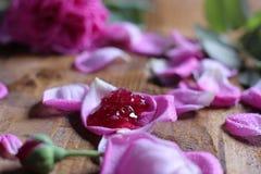 Rose Petal Jam Royalty Free Stock Photo