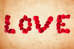 Rose Petal Love Stock Image