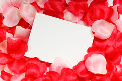 Rose Petal Notecard. For use at valentine's day, sweetest day or for any romantic invitation or announcement Stock Photo