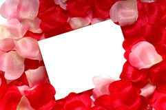 Rose Petal Notecard. For use at valentine's day, sweetest day or for any romantic invitation or announcement Royalty Free Stock Images