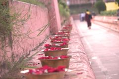 Rose petal offerings at bodhgaya Royalty Free Stock Photos