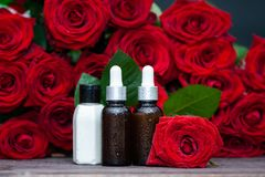 Rose Petal oil and cream in bottles and fresh. Flower and leaves on a natural background, bio, organic , nature cosmetics concept stock image