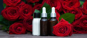 Rose Petal oil and cream in bottles and fresh flower and leaves on a natural background, bio, organic. Nature cosmetics concept royalty free stock image