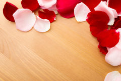 Rose petal Stock Image