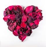 Rose Petal Pattern de muerte en forma de corazón Imagen de archivo