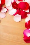 Rose petal Royalty Free Stock Photo