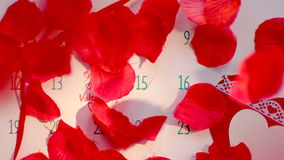 Rose petal rain on Valentine`s day. Rose petals falling on calendar page with Valentines day marked stock footage