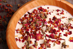 Rose Petal Spa (04). Rose petals in a bowl of milk Stock Photos