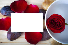 Rose petal spa. Rose, pebble and a blank card Royalty Free Stock Image