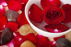 Rose petal spa. Rose and pebbles spa concept Royalty Free Stock Photography
