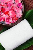 Rose petal spa Stock Images