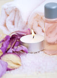 Rose petal spa. Aromatic rose petals, bath salt,  body oil and candle Stock Image