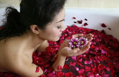 Rose petal spa. Young woman in rose petal water Royalty Free Stock Images