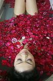Rose petal spa. Young woman in rose petal water royalty free stock photo