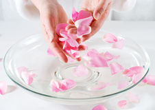 Rose Petal Spa. Preparing for rose petal spa Royalty Free Stock Photos