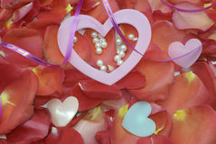 Rose petal for Valentine's Day Royalty Free Stock Images