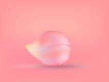 Rose petal Stock Photo