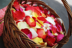 Rose petals. In the basket stock photo