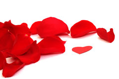 Rose petals. And small paper heart for Valentines Day Stock Photo
