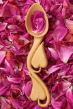 Rose Petals Photographie stock