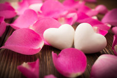 Rose petals. Rose petals and stone hearts royalty free stock image
