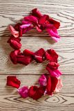 Of rose petals alphabet. Alphabet of rose petals - S letter laid out from the petals of red roses and pink flowers on a wooden light background royalty free stock photos