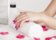 Rose petals around the beautiful hands Royalty Free Stock Image