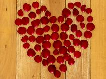Rose petals arranged in a heart shape stock photography