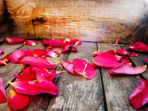Rose petals. Autumn leaves. Autumn composition. On a wooden texture. Royalty Free Stock Photos