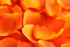 Rose petals background. Artificial rose red yellow petals background stock photo