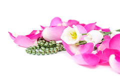 Rose petals background with flowers and beads Royalty Free Stock Images