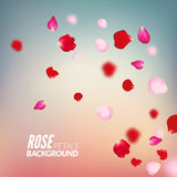 Rose petals background. For presentations, invitation ad print. Wedding valentine love concept Royalty Free Stock Photography