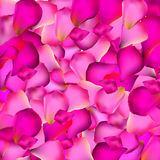 Rose Petals Background Vector Illustration Stock Images
